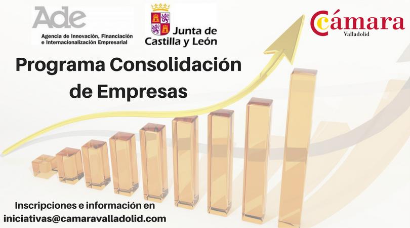 Programa Consolidación de Empresas