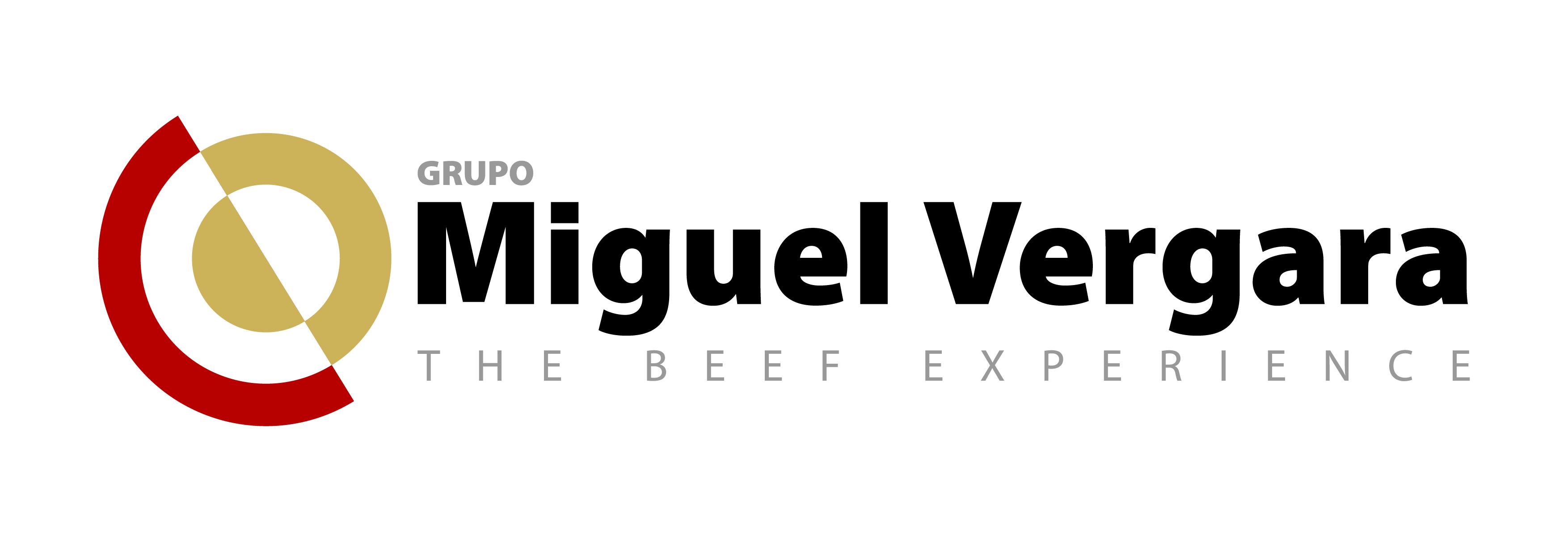 GRUPO-MIGUEL-VERGARA-logo-positivo - Cámara Valladolid
